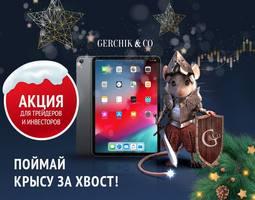 gerchik-novogodnyaya-aktsiya-poymay-krysu-za-khvost-image