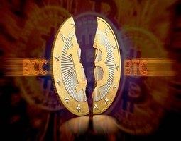 fort-financial-services-bitkoyn-cash-system-hard-fork-split-budet-prokhodit-image